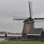 Oplichters windhandel roofde ongestoord tientallen miljoenen
