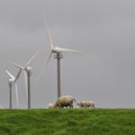 Grondposities voor lokale energiecooperaties