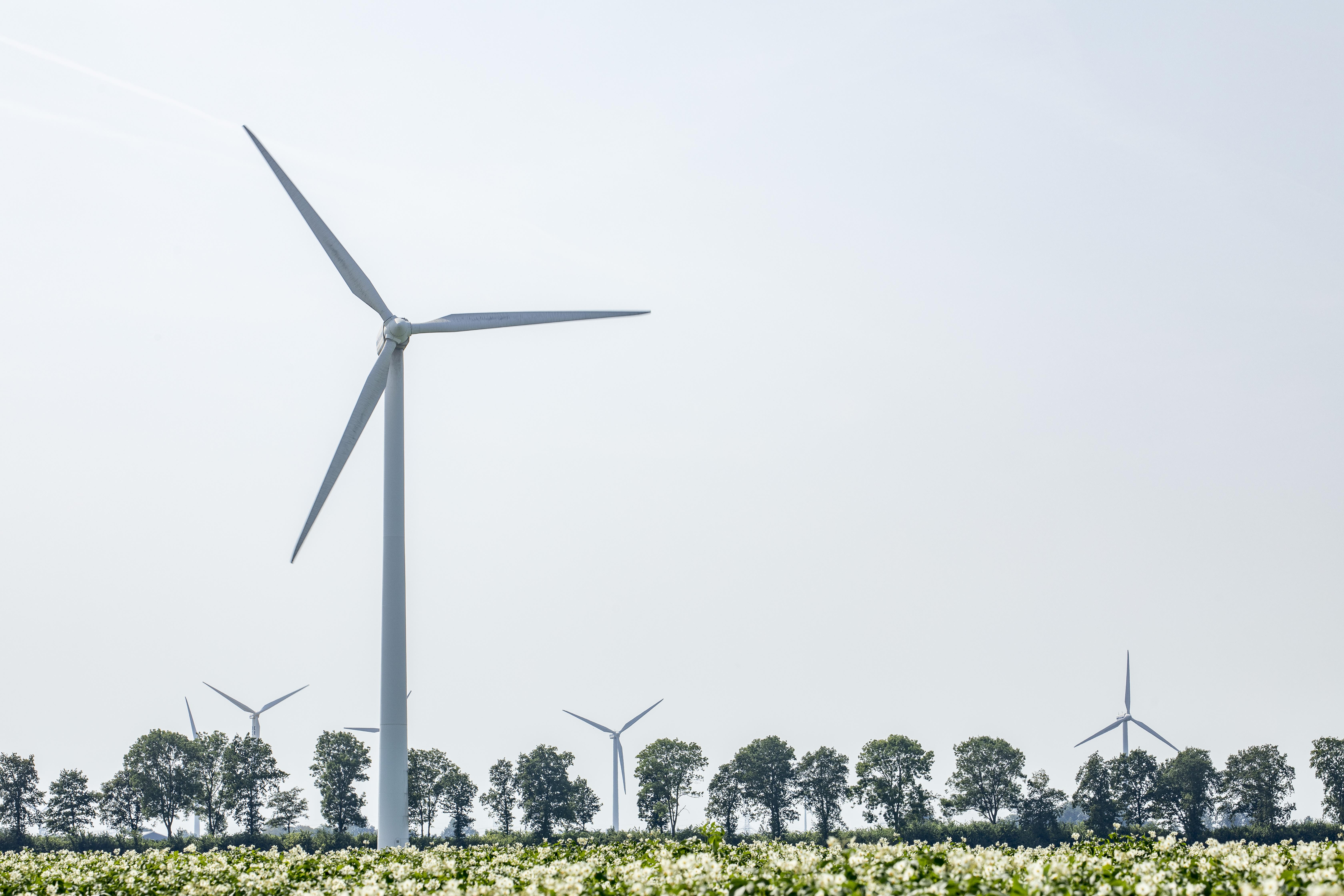 Vergunningen Windplanblauw onherroepelijk
