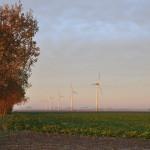 Greenpeace: 9 redenen waarom mensen windturbines omarmen