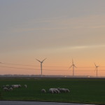 PVV Noord-Holland wil referendum tegen windenergie