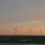 Pondera Consult krijgt opdracht voor MER Windpark Zeewolde