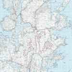 Regenwulpen hielden jarenlang bouw 370 mw Schots windpark tegen