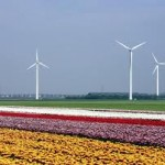 Windpark Zeewolde start in 2020