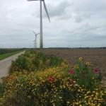 Federatieplan wind Flevoland vraagt om andere samenwerking