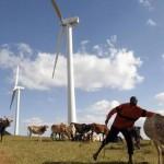 Wind in Kenia
