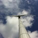 Raad van State trekt stekker uit plan Eneco's windpark in Ossendrecht