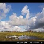 Steenwijkerland kan bestemmingsplan tbv Windpark Scheerwolde afwijzen